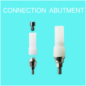 CONNECTION ABUTMENTS