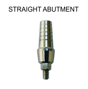 STRAIGHT ABUTMENT